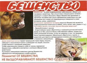 Бешенство: памятка для владельцев животных.