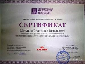 ВВ сертиф 1