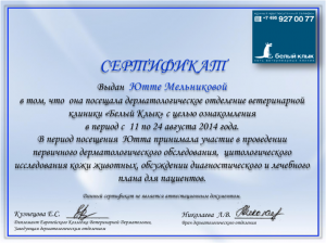Сертификат БК рис