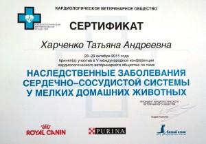 Татьяна сертификат 1